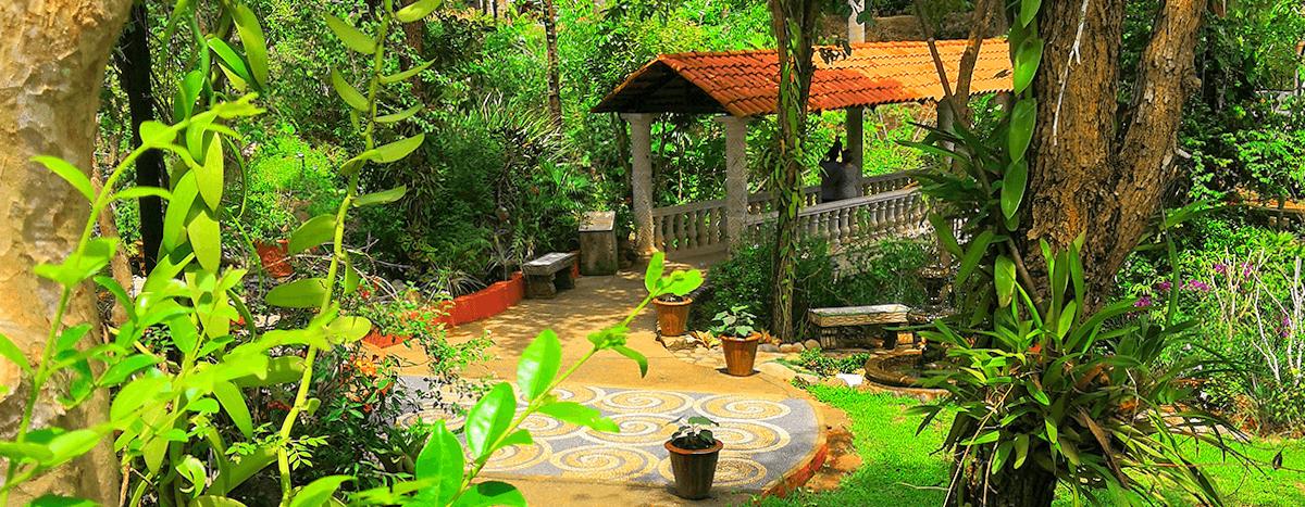Vallarta Botanical Gardens.